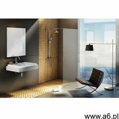 ścianka wolnostojąca walk in wall 100/200 h polerowane aluminium + transparent gw9wa0c00z1 marki - ogłoszenia A6.pl