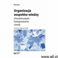 Organizacja zespołów wiedzy - Justyna Trippner-Hrabi - ebook - ogłoszenia A6.pl