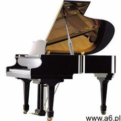 Samick sig-59d ebhp fortepian - ogłoszenia A6.pl