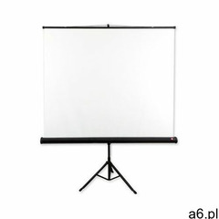 Ekran projekcyjny AVTEK Tripod Standard 200x200 - ogłoszenia A6.pl