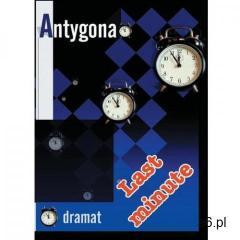 Antygona. Opracowanie - Iwona Wierzba (9788389284624) - ogłoszenia A6.pl