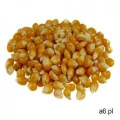 Ziarno kukurydzy (popcorn) 22.68 kg marki Badapak - ogłoszenia A6.pl