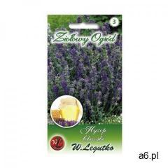 Hyzop lekarski nasiona tradycyjne 0.2 g W. LEGUTKO (5903837504015) - ogłoszenia A6.pl