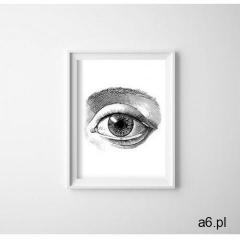 Plakat retro Plakat retro Anatomia oka - ogłoszenia A6.pl