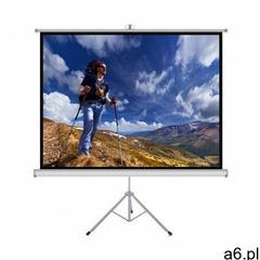 Art Ekran projekcyjny matt white ts-84 170x127 - ogłoszenia A6.pl