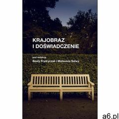 Krajobraz i doświadczenie - Frydryczak Beata, Salwa Mateusz - książka, oprawa broszurowa - ogłoszenia A6.pl