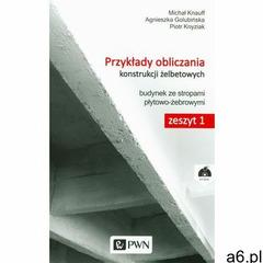 Przykłady obliczania konstrukcji żelbetowych Zeszyt 1 z płytą CD-ROM (9788301181598) - ogłoszenia A6.pl