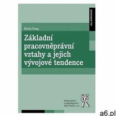 Základní pracovněprávní vztahy a jejich vývojové tendence Štang, Michal (9788073807948) - ogłoszenia A6.pl