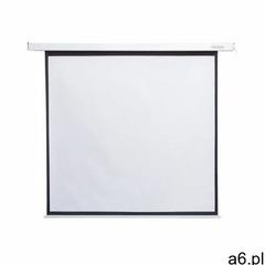 Ekran projekcyjny 4WORLD Matt White 09463 178 x 178 - ogłoszenia A6.pl