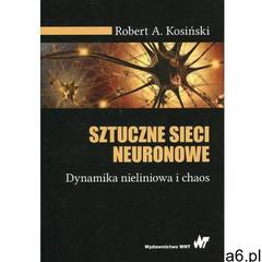 Sztuczne sieci neuronowe. Dynamika nieliniowa i chaos (2019) - ogłoszenia A6.pl