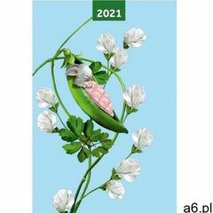 Kalendarz 2021 a5 dzień pea pods marki Narcissus - ogłoszenia A6.pl
