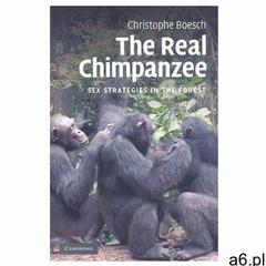Real Chimpanzee (9780521125130) - ogłoszenia A6.pl