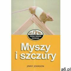 Myszy i szczury (2008) - ogłoszenia A6.pl