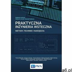 Praktyczna inżynieria wsteczna (2016) - ogłoszenia A6.pl