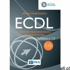 ECDL S10. Podstawy programowania w języku Python - Albert Hodorowicz (MOBI), Albert Hodorowicz - ogłoszenia A6.pl