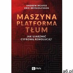 Maszyna Platforma Tłum - Andrew McAfee, Erik Brynjolfsson (EPUB) (9788301207830) - ogłoszenia A6.pl
