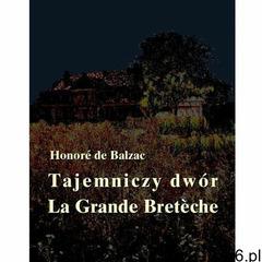 Balzac Honoré de: Tajemniczy dwór e-book, okładka ebook (46 str.) - ogłoszenia A6.pl