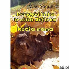 Przygód kilka królika Zefirka. Kocia mama - V.G. Soque, Wydawnictwo e-bookowo - ogłoszenia A6.pl