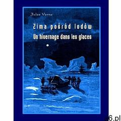 Zima pośród lodów. Un hivernage dans les glaces, Armoryka - ogłoszenia A6.pl