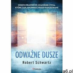Odważne dusze. Odkryj prawdziwe znaczenie życia, które zaplanowałeś przed narodzinami - Robert Schwa - ogłoszenia A6.pl