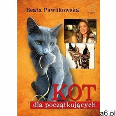 Kot dla początkujących - Beata Pawlikowska (2016) - ogłoszenia A6.pl