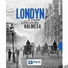 EBOOK Londyn w czasach Sherlocka Holmesa (9788301185510) - ogłoszenia A6.pl