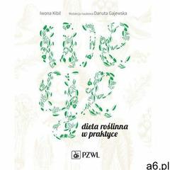 Wege - Danuta Gajewska, Iwona Kibil (EPUB), Wydawnictwo Lekarskie PZWL - ogłoszenia A6.pl
