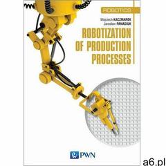 Robotization of production processes, Wydawnictwo Naukowe PWN - ogłoszenia A6.pl