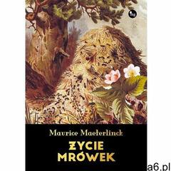 Życie mrówek - Maurice Maeterlink (EPUB) (9788377794708) - ogłoszenia A6.pl