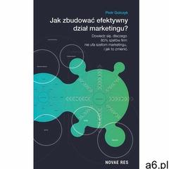 Jak zbudować efektywny dział marketingu? (160 str.) - ogłoszenia A6.pl