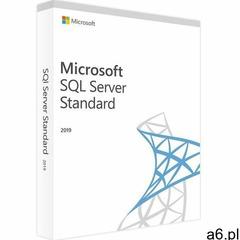 Microsoft SQL Server 2019 Standard + 100 User - ogłoszenia A6.pl