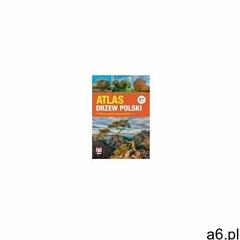 Atlas drzew polski. przewodnik przyrodnika (9788380916197) - ogłoszenia A6.pl