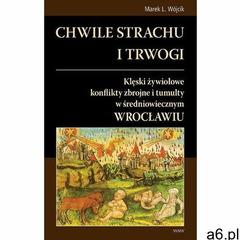 Chwile strachu i trwogi. Klęski żywiołowe konflikty zbrojne i tumulty w średniowiecznym Wrocławiu (1 - ogłoszenia A6.pl