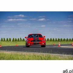 Jazda na miejscu pasażera Forda Mustanga dla dziecka: Ilość okrążeń - 1, Tor - Tor Drive Land - Wars - ogłoszenia A6.pl