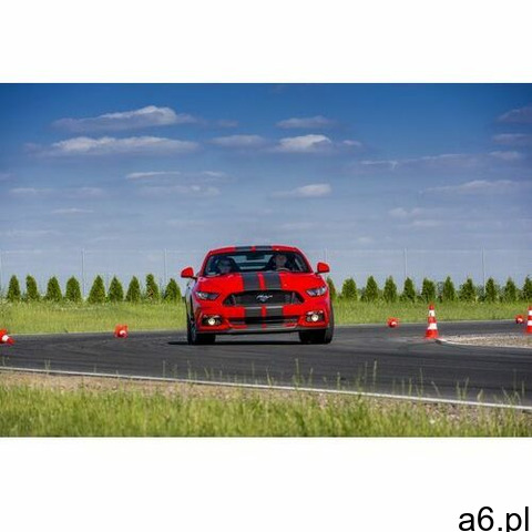 Jazda na miejscu pasażera Forda Mustanga dla dziecka: Ilość okrążeń - 1, Tor - Tor Silesia Ring głów - 1