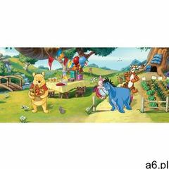 Tapeta fotograficzna Miś Puchatek i przyjaciele, 202 x 90 cm, 688586 - ogłoszenia A6.pl
