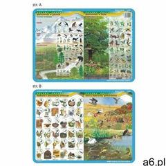 Podkładka edu. 020 - piętrowość w górach i lesie.. (5903111525200) - ogłoszenia A6.pl