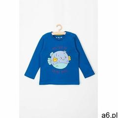 5.10.15. Bluzka chłopięca bawełniana 5h3705 - ogłoszenia A6.pl