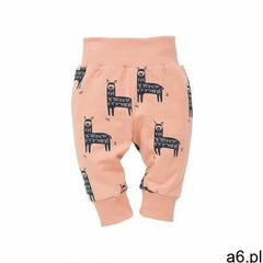 Pinokio Spodnie niemowlęce 5m36ax - ogłoszenia A6.pl