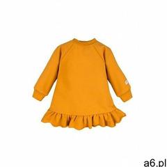 Sukienka dresowa długi rękaw 6k40bg marki Eevi - ogłoszenia A6.pl
