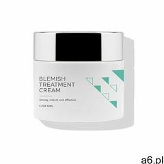 Ofra Cosmetics Krem na dzień / noc Ofra Cosmetics Krem na dzień / noc Blemish Treatment Cream #famil - ogłoszenia A6.pl
