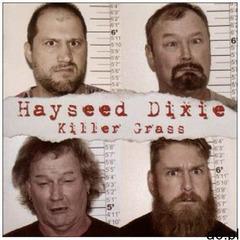 Hayseed Dixie - Killer Grass -Cd+Dvd- - ogłoszenia A6.pl